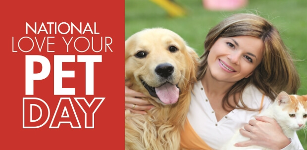 Love Your Pet Day: Dog Treat Recipes | Mr. Appliance Blog
